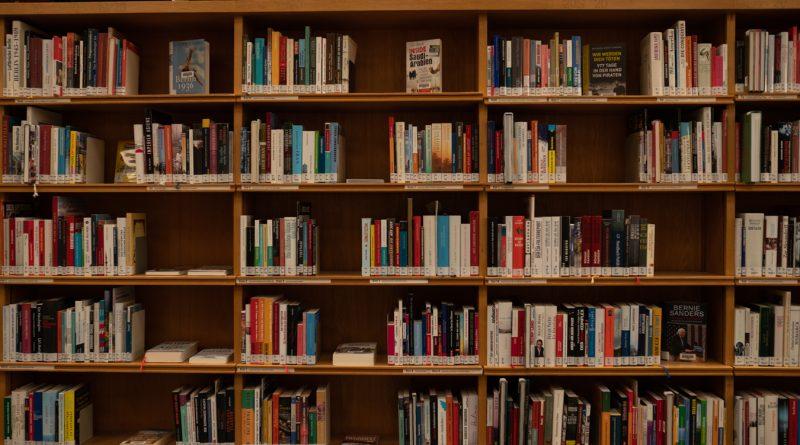 Das Foto zeigt ein Bücherregal