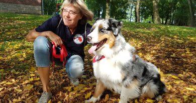 Das Bild zeigt einen Therapiehund mit Trainerin.