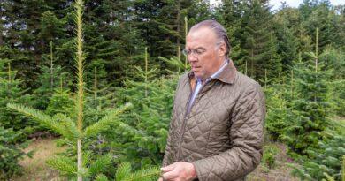 Graf von der Schulenburg auf der Tannenbaumplantage