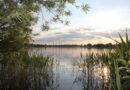 Naturschutz im Allerpark Wolfsburg